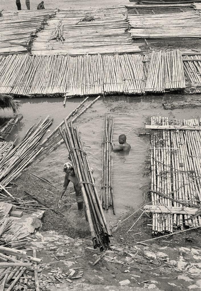 chargement-bambou2.jpg