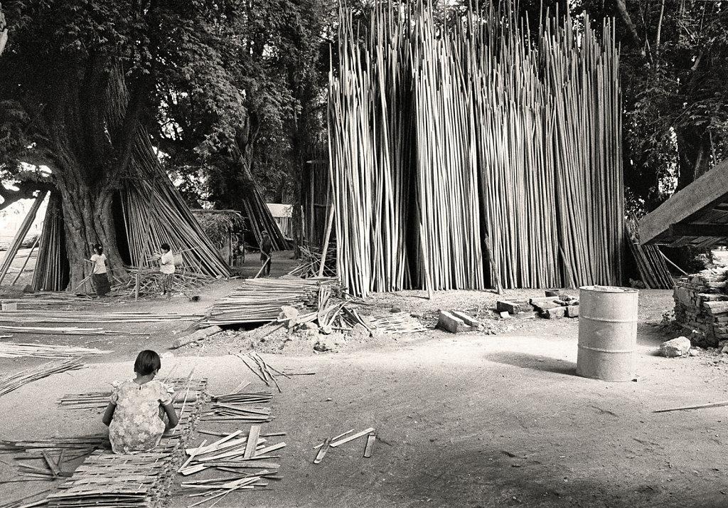 myet-bambou2.jpg